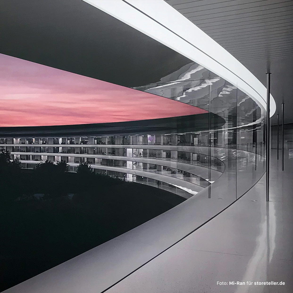 "Foto-Galerie: Neue ""Avenues"" und exklusive Design-Elemente im Apple Park Visitor Center"